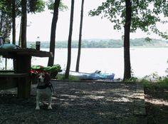 Blue Marsh Lake, Reading, PA