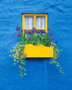 Ireland (Gelbes Fenster auf blauem Grund)