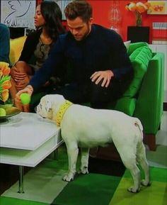 Chris, dogs don't eat apples