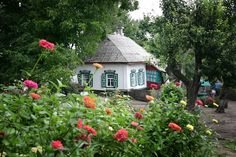 The Ukrainian cottage is in the country by Марина Удовиченко, via 500px.