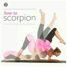 How to Scorpion.