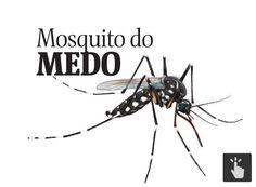 Image result for campanha contra dengue, zika e chikungunya 2016 pernambuco