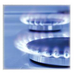 Burners Need Crystal Waters Plumbing Gas-Fitters.