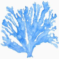Sea Coral in Indigo Print by driftwoodinteriors on Etsy, $25.00