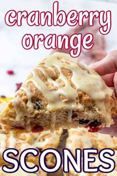 Orange Cranberry Scones are a classic combination for breakfast or snacks. They have a delicious gluten free mix too. Citrus, cranberry and a sweet glaze will make you want to serve these over and over. Perfect Breakfast, Vegan Breakfast, Gluten Free Recipes, Vegan Recipes, Cranberry Orange Scones, Vegetarian Desserts, Dessert Bread, Vegan Treats, Baked Goods