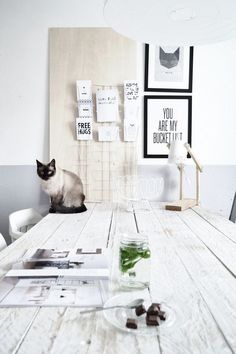 This is so my future: all white room with a Himalayan cat = perfection! Decoration Inspiration, Interior Inspiration, Room Inspiration, Relax, Home Office Space, Minimalist Interior, White Houses, Scandinavian Interior, Interiores Design