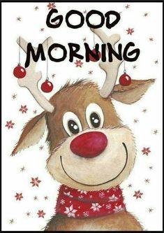 Good Morning Sister, Good Morning Picture, Good Morning Good Night, Morning Pictures, Good Morning Images, Good Morning Quotes, Christmas Animals, Christmas Quotes, Christmas Pictures