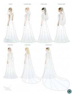 Veils on brides