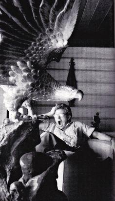 James Dean ~ Sanford Roth, 1955
