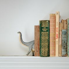 These trendy dino creatures are perfect in the kitchen, living room, and even the bedroom!