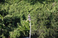 De redactie van Hier is Thailand.nl altijd op zoek is naar jouw persoonlijke belevingen in Thailand. Vandaag: Carlien gaat bungee jumpen in Chiang Mai.