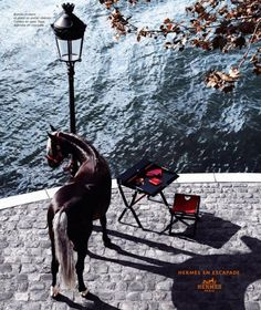 Hermès January 2006 Ad Campaign, photographed by Camilla Akrans