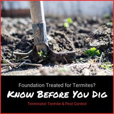 Did you know that if your home's foundation was treated for termites, you can still disrupt the barrier created with landscaping or construction near your home's foundation? Learn more from Terminator: www.goterminator.com/blog/know-before-you-dig #TerminatorTPC #Termites #TermiteBarrier #TermiteTreatment Organic Vegetables, Growing Vegetables, Gardening Vegetables, Permaculture, Gardening For Beginners, Gardening Tips, Flower Gardening, Planting Flowers, How To Make Compost
