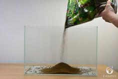 A Guide for Setting Up a Basic Planted Aquarium - Z-Aquatics Aquarium Set, Aquarium Rocks, Live Aquarium Plants, Aquarium Design, Planted Aquarium, Aquarium Ideas, Saltwater Fish For Sale, Rimless Aquarium, Aquariums For Sale