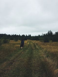 """""""So in peace our task we ply, Pangur Bán, my cat, and I…"""" – Ways of Wood Folk Prince Edward Island, Country Roads, Peace, Folk, Cats, Atlantic Ocean, Vsco, Tricot, Gatos"""