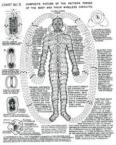 "The Awakened State | The Universe is Inside of You — lucifelle: Polarity Therapy  Charts 1-10 ""The..."