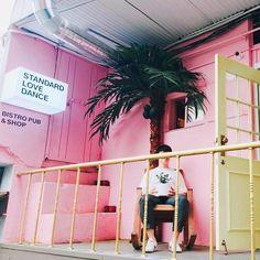 날씨 좋은날 우리 주인과 #연남동 #standardlovedance 데이트 !!  룰루    #plantydaily#planty#플랜티#스마트화분#iot#kickstarter#crowdfunding#startup #gardening#일상#맞팔#럽스타그램 by planty_daily