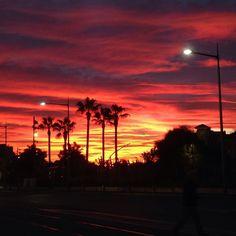 No filter no Cali  #skatelife #skateboard #skateboarding #sunset #nofilter #nocali by languasco at http://ift.tt/1hCWVmI
