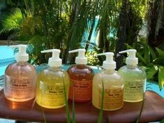 My Homemade Recipe For a Natural and Cheap Shower Gel with Aleppo Soap. Homemade Shower Gel, Diy Bathroom Cleaner, Aleppo Soap, Natural Showers, Limpieza Natural, Homemade Cosmetics, Home Made Soap, Diy Cleaning Products, Water Crafts