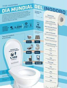 Día Mundial del inodoro