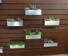You are looking at a handcrafted, made in the USA (by my amazing husband), metal planter box designed to hang as pictured above or in a way that best showcases your garden. This listing features a stainless steel metal planter box. The dimensions of the planter box are: 5 D x 5.5 H x 18 L. The hanging edge (or lip) measures 3/4 off the back with a 1/2 drop and is designed to hang securely on a surface that is 3/4 thick.  Please allow up to 2 weeks for processing your order since all items…