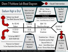 New Design of the BMP Chem7 Fishbone Diagram explaining labs - From the Blood Book Theses are the Labs you should know Hyponatremia Sodium Lab Value Blood Hyponatremia Mnemonic Nursing Student This is a collection of my Blood Book part of BMP Fishbone diagram explaining the Hyperkalemia Hypokalemia, Na K Cr Hypomagnesemia BUN Creatinine Addisons Dehydration Study Sheets for Nurses NCLEX Tips The Nursing Notes Cheats KAMP 300 free NCLEX Questions on the site!