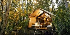 Paperbark Camp in Jervis Bay, Australia: eco-camp with an excellent restaurant (3 hours south of Sydney).