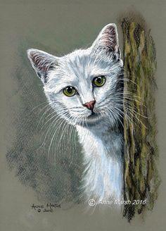 Anne Marsh ~ White Cat under Surveillance