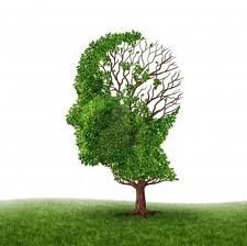 Alzheimer's disease is a neurological disorder in which the death of brain cells causes memory loss. Read on to know more about what is alzheimer's disease. Stages Of Dementia, Dementia Care, Alzheimer's And Dementia, Alzheimer's Symptoms, Signs And Symptoms, Honore De Balzac, Elderly Care, Mindfulness Meditation, Brain Health