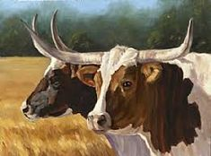 Texas Longhorns by Denise Rich Oil ~ 12 x 16 Denise Rich, Mini Cows, Rooster Art, Cow Painting, Cow Art, Western Art, Art Pictures, Art Pics, Artist At Work