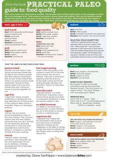 practical paleo guide to food quality/ want to read this later and see what the fuss is all about