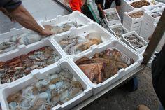 Fisherman's catch....