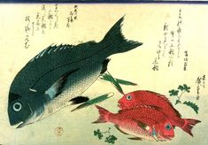 Hiroshige, A Grand Series of Fishes,