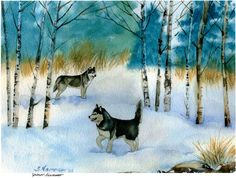 Siberian Husky Dog Fine Art Print by S Nummer by caninepainter, $35.00