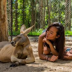 The very photogenic @piccolayoung with Mr playing hard to get at Currumbin wildlife sanctuary  #kangaroo #Currumbinwildlifesanctuary #currumbin #doyouevenlift #muscles #korea #GoldCoast #goldcoastlife #wildlife #nikon #sigma #24mm #summer #sun #Australia #heritagetrust by alexjsit http://ift.tt/1X9mXhV