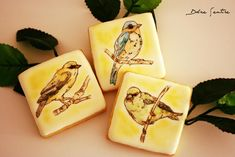 Spring Birds   Cookie Connection