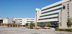 Ética Empresarial na Economia em debate na Universidade Portucalense