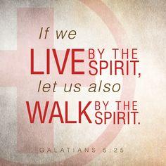REDE MISSIONÁRIA: WALK BY THE SPIRIT