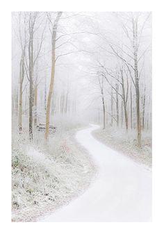 Minimalistic White Winter Woods Winter by renphotographycouk, £19.00