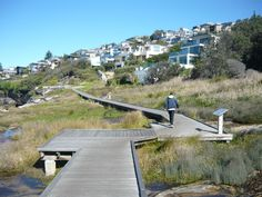 The walkway to Coogee Beach after leaving Alexandria Parade. The walkway goes over a swamp protected as heritage.