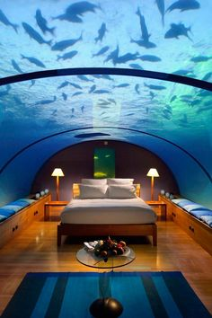 Sleep with the fish. Conrad Maldives Rangali Island (Maldives) - Jetsetter