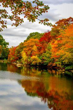 Autumn in Mystic CT