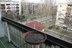 Téli madáretetés | Magyar Madártani és Természetvédelmi Egyesület Plants, Plant, Planets