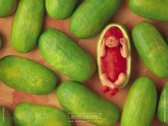 Resultados de la Búsqueda de imágenes de Google de http://3.bp.blogspot.com/-gMxgryTw3Y4/TewUYedxUDI/AAAAAAAA7ZI/oVaTbrvSpQw/s1600/Fond_d_ecran_Anne_Geddes_71.jpg