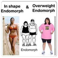 Endomorphs are the body type that perhaps are most likely to feel they drew the short straw. Endomorphs naturally tend to have fuller figure, curvy or obese and struggle to keep their body fat perc...