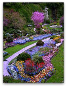 butchart+gardens+spring   butchart gardens day 11 monday butchart gardens victoria salt spring