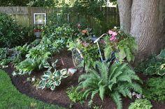 shade garden ideas | Shade garden ideas