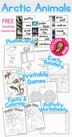 Free Arctic Animals Preschool Printables.  This free set of teeaching resources includes photo wordwall cards, early reader, bump game, activity worksheets, color and learn pages, crafts and more!  All free from PreschoolMom.com