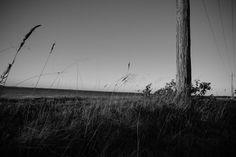 Poles | 50mm