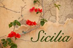 The untamed beauty of Sicily...